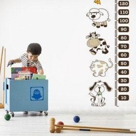 Children's vinyl meter height