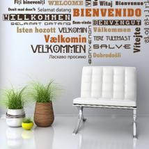 Vinilo Bienvenido Idiomas