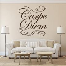 Vinilo Decorativo Carpe Diem