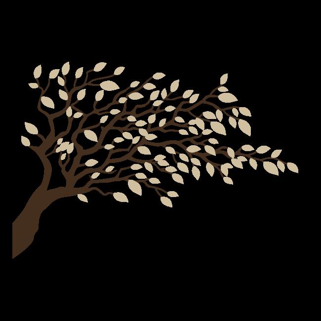 vinilo decorativo rama de Árbol con hojas