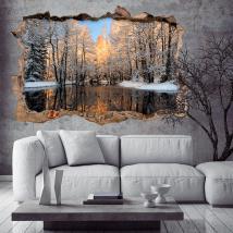Vinilo 3D Lago En Invierno