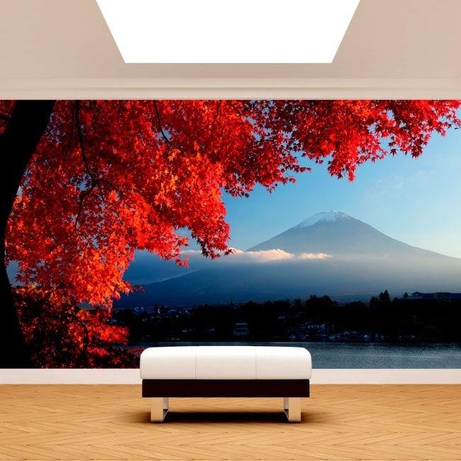 Fotomurales Paredes Monte Fuji