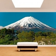 Fotomurales Monte Fuji