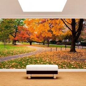 Fotomurales Parque En Boston