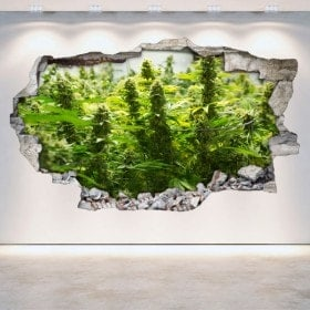 Vinilos Cannabis Pared Rota 3D