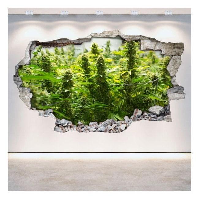 Vinilos Cannabis Pared Rota 3D