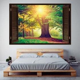 Ventana 3D Árbol En El Bosque