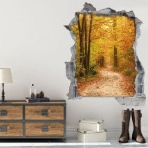 Vinilos 3D Camino En La Naturaleza