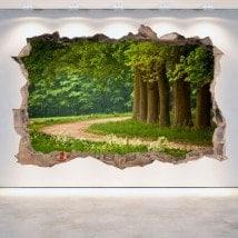 Vinilos 3D Paredes Camino Y Árboles