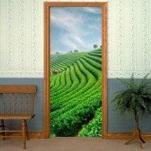 Pegatinas Para Puertas Plantación De Té