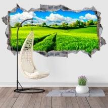 Vinilos decorativos naturaleza 3D