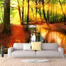 Fotomural atardecer en el bosque en otoño
