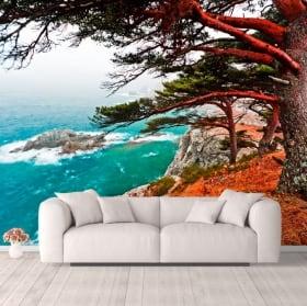 Fotomurales árbol cedro Rocky Island