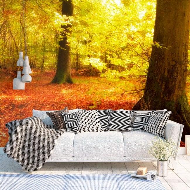 Fotomural árboles en el bosque otoño