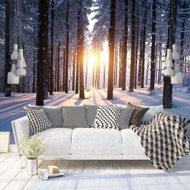 Fotomurales atardecer árboles invierno