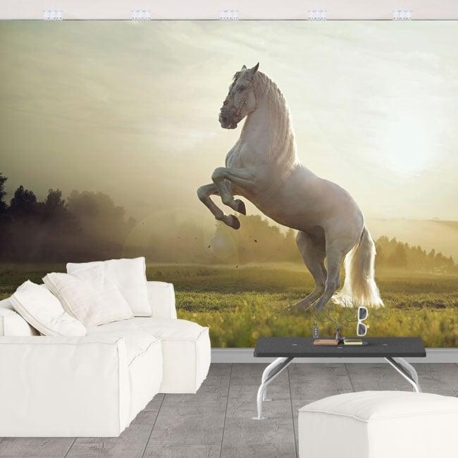 Fotomurales vinilo caballo blanco