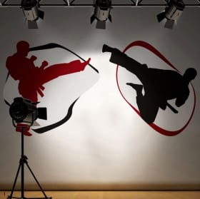 Vinilos paredes karate-do siluetas