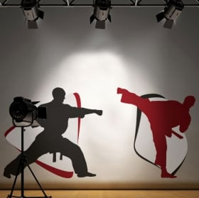 Vinilos adhesivos paredes karate-do