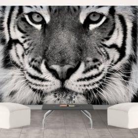 Fotomural de vinilo tigre