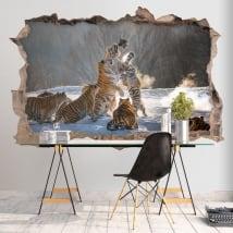 Vinilos paredes tigres de bengala 3d