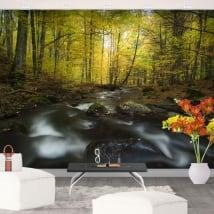 Fotomurales de vinilo río naturaleza en otoño