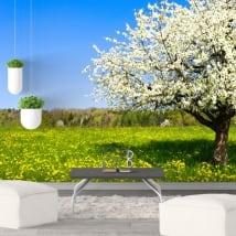 Fotomurales de vinilo árbol flor de cerezo