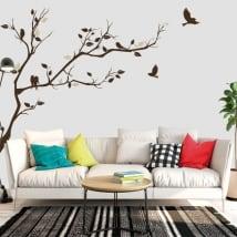 Vinilos rama de árbol y pájaros para decorar