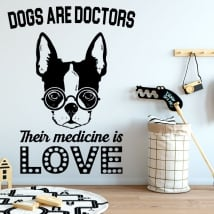 Vinilos y pegatinas frases the good doctor