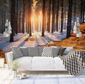 Fotomurales pared rota atardecer árboles invierno
