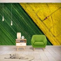 Murales de vinilos colores naturaleza