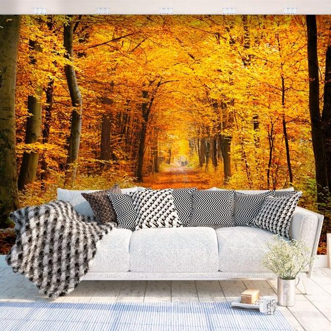 Fotomurales de vinilos árboles en otoño