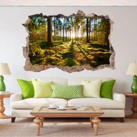 Vinilos decorativos 3d atardecer en el bosque