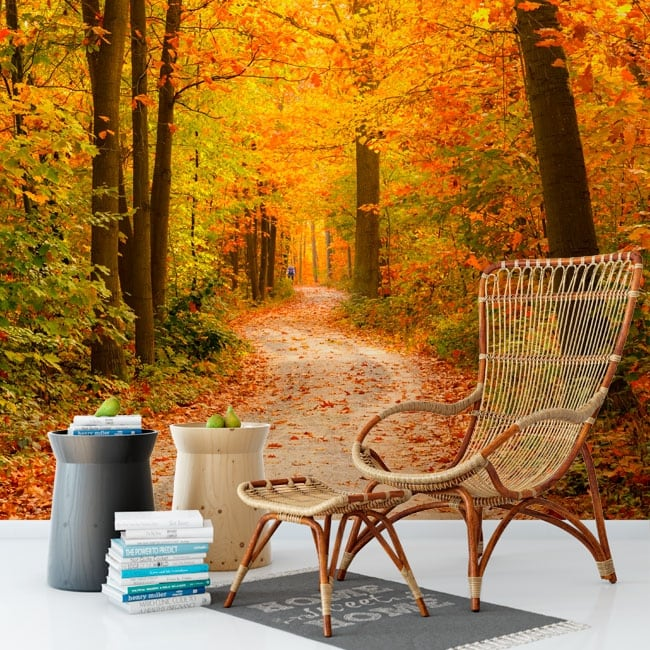 Murales de vinilos árboles en otoño