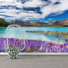 Murales de vinilos lago tékapo