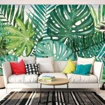 Fotomurales vinilos paredes naturaleza tropical