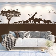 Vinilos decorativos áfrica