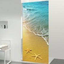Vinilos mamparas estrellas de mar