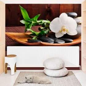 Fotomurales de vinilos con estilo zen