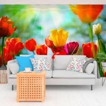 Fotomurales de vinilos flores tulipanes