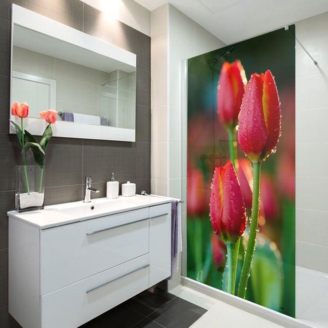 Vinilos para mamparas flores tulipanes