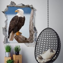Vinilos 3d águila calva americana