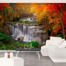 Fotomurales con cascadas y árboles en otoño