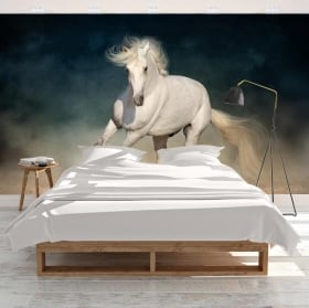 Fotomurales adhesivos caballo blanco