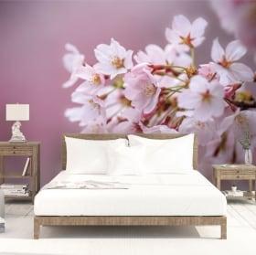 Fotomurales de vinilos flor de cerezo japonés