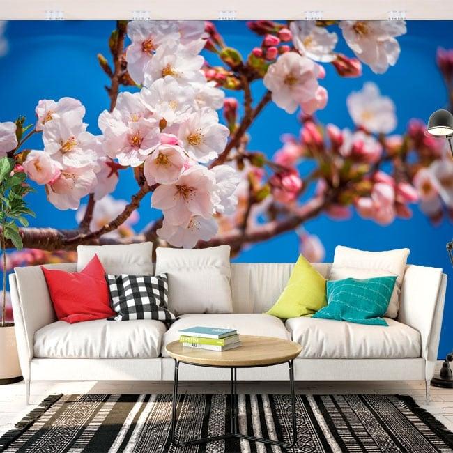 Fotomural flor de cerezo japonés