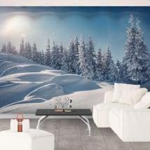 Fotomurales de vinilos atardecer en invierno
