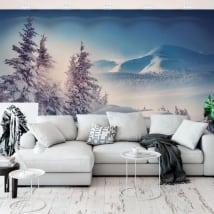 Fotomurales de vinilos invierno en los montes cárpatos