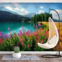 Fotomurales de vinilos lago champfèr