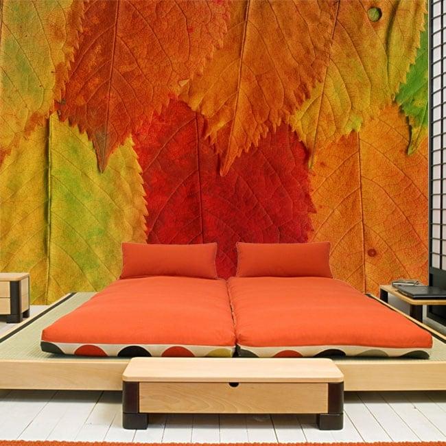 Fotomurales de vinilos hojas de colores