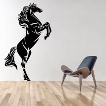 Vinilos decorativos y pegatinas caballo